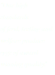 """Our high standards of feed, testing and welfare produce eggs of award-winning quality."""